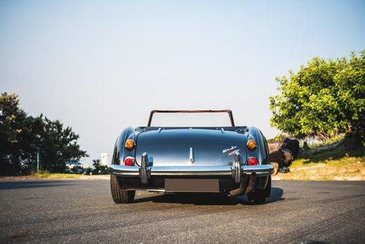 Austin Healey 3000 Replica (19).jpg