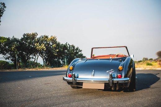 Austin Healey 3000 Replica (20).jpg