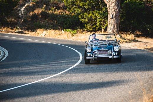Austin Healey 3000 Replica (4).jpg