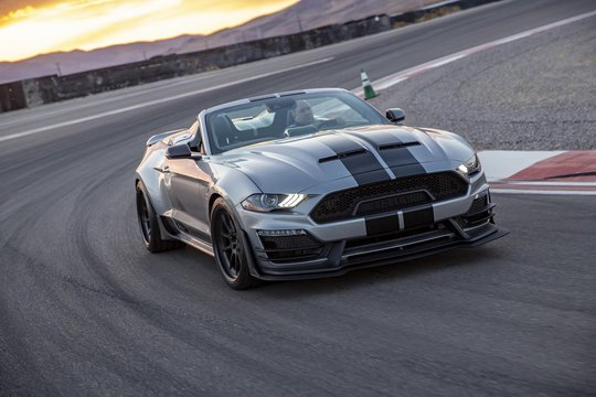 NEW SHELBY SUPER SNAKE AVAILABLE TO ORDER