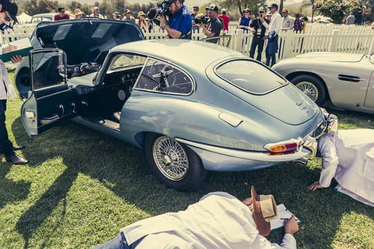 CONCOURS SOUTH AFRICA 2021 CANCELLED